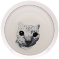 Echo Cat Bowl