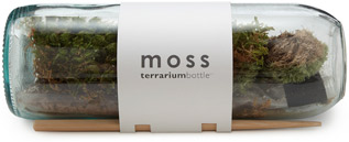 Uncommon Goods Moss Terrarium Bottle