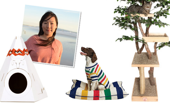 UNA KIM : The 10 things my pets go nuts for