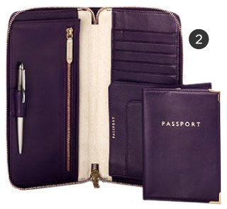 Aspinal Travel Wallet & Passport Holder