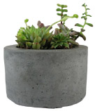 Roughfusion Round Concrete Planter