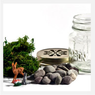 Acme Party Box Terrarium Kit